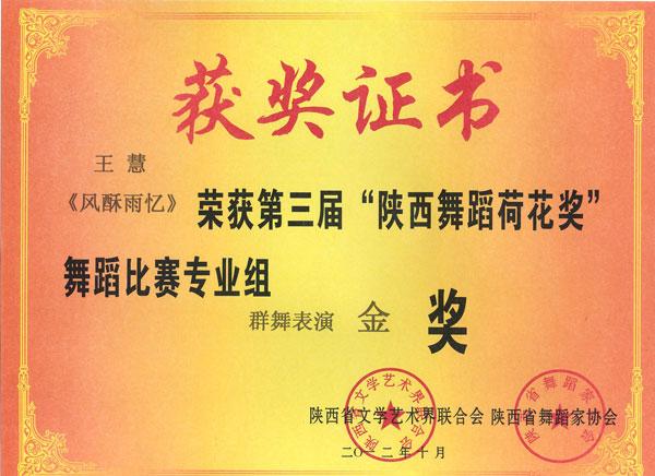 """王慧《风酥雨忆》荣获第三届""""陕西舞蹈荷花奖""""舞蹈比赛群专业组群舞表演金奖"""